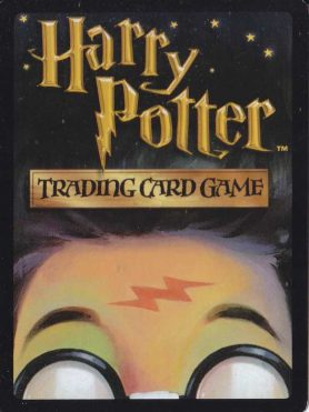 Harry Potter Quidditch Cup Game Card